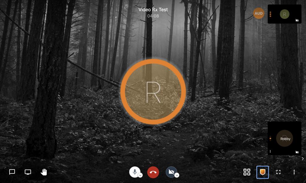 nanoMeet Screenshot