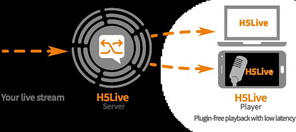 h5live-schema